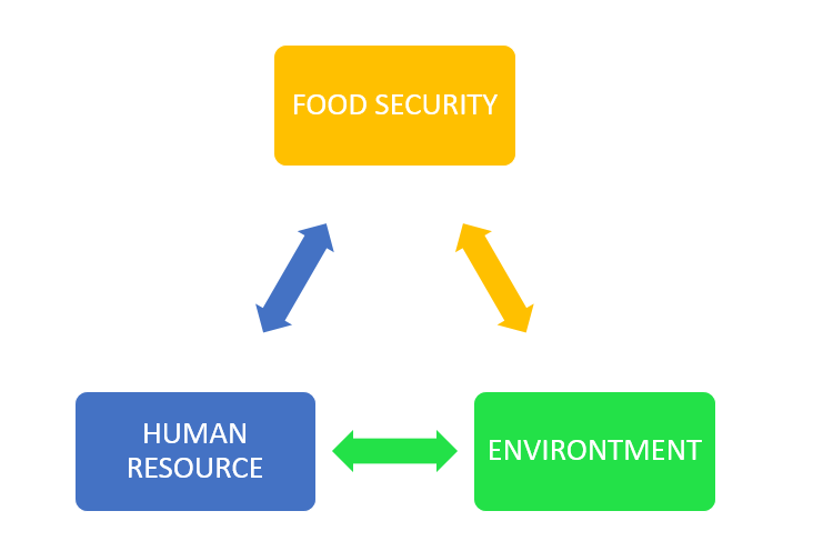 Picture 3. Food triangle ( Source : noor, 2019)