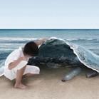 marine pollution (earthlymission)